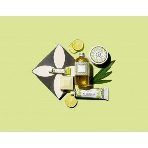 Alaintoine Body Cream