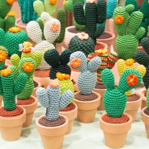 Cactus in crochet