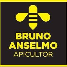 Bruno Anselmo Apiculteur